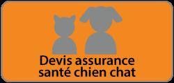Image-devis-assurance-sante-chien-chat